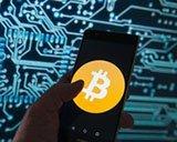 Аналитики прогнозируют падение большинства криптовалют до нуля