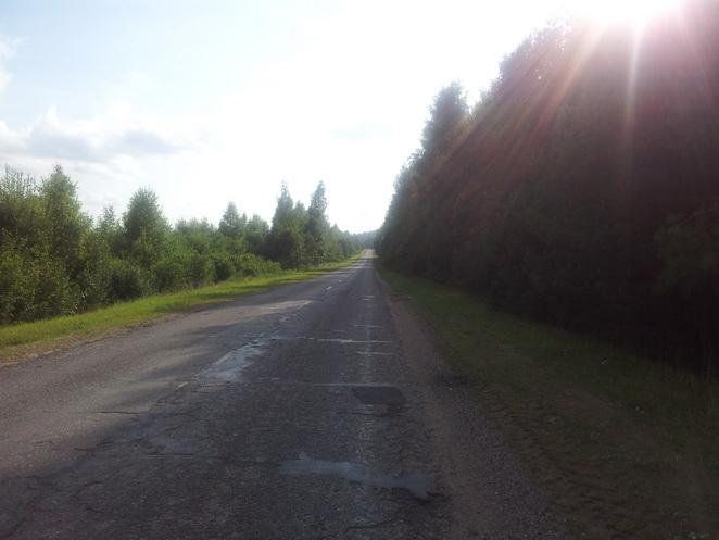 дорога из леса