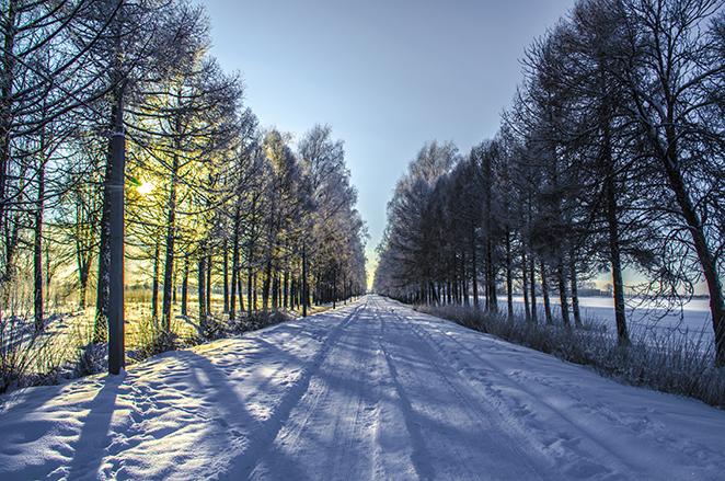 Зимняя прогулка - Панорама