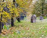 Осенняя прогулка по Междуречью