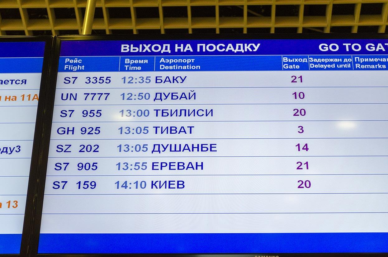 Прибытие рейсов домодедово сегодня